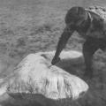 """Remembering the """"Bermuda Blobs"""""""
