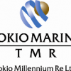 Tokio Re Form Two New Corporations