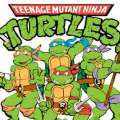 Locals Urged Not To Buy Turtles As Film Looms