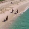 Video: Ocean Treks Show Features Bermuda