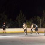 bermuda inline hockey league 13