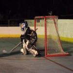 bermuda inline hockey league