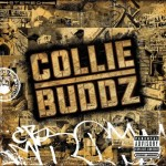 collie buddz album