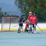 5 inline hockey bda