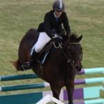 bermuda horse ag 7
