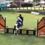 bermuda horse ag