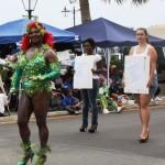 may 24 2010 parade (18)
