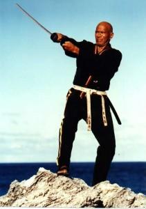 skipper ingham