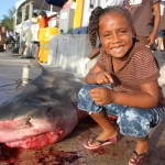 tiger shark july 2010 (18)