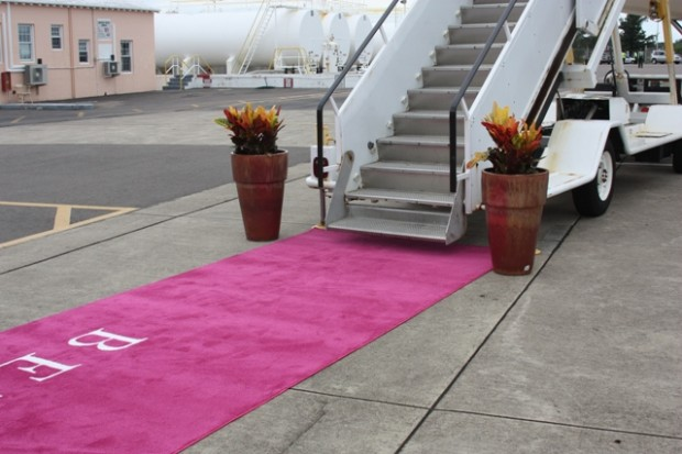 bermuda airpost pink carpet
