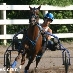 sept 11 2010 harness racing (11)