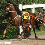 sept 11 2010 harness racing (18)