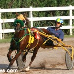 sept 11 2010 harness racing (2)