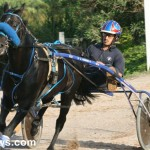 sept 11 2010 harness racing (3)