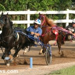 sept 11 2010 harness racing (8)