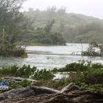 spittal pond sept 18 2010 (5)