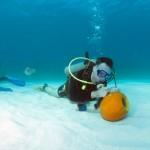 bermuda underwater halloween 2010 (11)