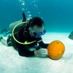 bermuda underwater halloween 2010 (7)