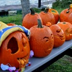 underwater pumpkin carving bios 2010 (6)