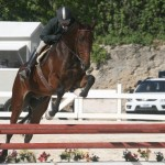 bda equestrian nov 2010 (10)