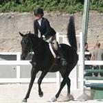 bda equestrian nov 2010 (12)