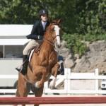 bda equestrian nov 2010 (17)