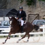 bda equestrian nov 2010 (3)