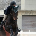bda equestrian nov 2010 (4)