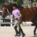 bda equestrian nov 2010 (8)