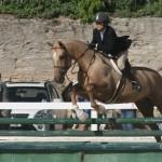 bda equestrian nov 2010 (9)