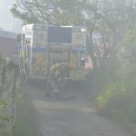 fire decv 14 2010 (6)