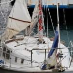Carefree IV Arrives in Bermuda Jan 21st 2011-1-18