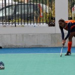 Women's Hockey Bermuda Jan 16th 2011-1-7