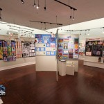 Annual Schools Art Show Bermuda Feb 15th 2011-1-9