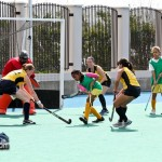 Canaries vs Longtail Canaries Womens Hockey  Bermuda Mar 12th 2011-1-3