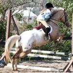 Junior Extravaganza Show Bermuda Equestrian Federation Mar 5th 2011-1-4