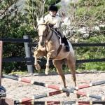 Junior Extravaganza Show Bermuda Equestrian Federation Mar 5th 2011-1-7
