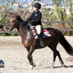 Junior Extravaganza Show Bermuda Equestrian Federation Mar 5th 2011-1-8