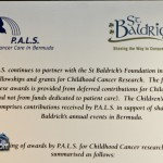St Baldricks Foundation Bermuda Mar 18th 2011-1-8
