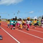 Telford Electric Magic Mile - Bermuda Mar 5th 2011-1
