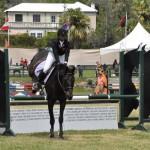 ag show equestrian 2011 bermuda (1)