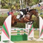 ag show equestrian 2011 bermuda (8)