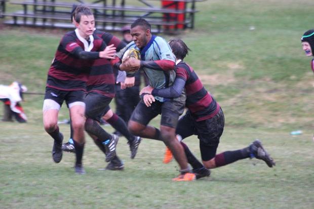 bermuda rugby april canada (2)