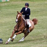 Royal Bermuda Ascot Garden Party & Horse Show Equestrian  Bermuda May 15 2011-1-11