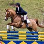 Royal Bermuda Ascot Garden Party & Horse Show Equestrian  Bermuda May 15 2011-1-12