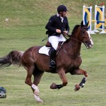 Royal Bermuda Ascot Garden Party & Horse Show Equestrian  Bermuda May 15 2011-1-23