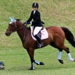 Royal Bermuda Ascot Garden Party & Horse Show Equestrian  Bermuda May 15 2011-1-28