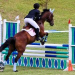 Royal Bermuda Ascot Garden Party & Horse Show Equestrian  Bermuda May 15 2011-1-32