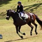 Royal Bermuda Ascot Garden Party & Horse Show Equestrian  Bermuda May 15 2011-1-33
