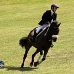 Royal Bermuda Ascot Garden Party & Horse Show Equestrian  Bermuda May 15 2011-1-34